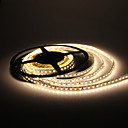 5m 10w 600x3528 SMD bianco caldo LED Light Strip lampada (12V dc)