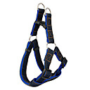 Plastic Buckle Cool Jean Pattern Nylon Harness and Leash for Dogs