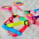 Rainbow Style Harness with Leash for Dogs (120cm/47.2