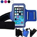 Sports Gym Armband Case Cover for iPhone 6 (Assorted Colors)