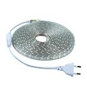 Buy 5m 220V SMD 5050 led strip light+Power plug,white/warm white/green/blue/red,60leds/m 300led waterproof Strips