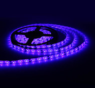 Etanche 5M 300x3528 SMD LED Strip Light Blue Lamp (12V)