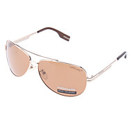 HONGLANG Classical Coffee Resin Polarized Lens Golden Frame Driving Sunglasses