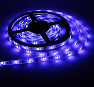 5M 50W 300x5050SMD Blue Light LED Strip Lamp (DC 24V)