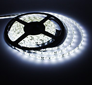 5M 15W 300x3528SMD White Light LED Strip Lamp (DC 12V)