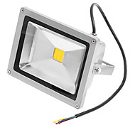 20W 3000K luz blanca cálida LED Flood Light AC110/220V