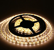 5M 300X3528 Smd Warm White Led Strip Light and Connettore e AC110-240V a Dc12V3A Transformer
