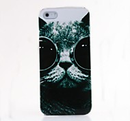 VORMOR® Glasses Cat Plastic Back Case for iPhone 5/5S
