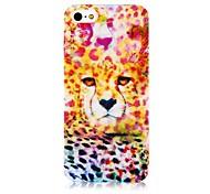 Bunte Leopard-Muster-Silikon Soft Case für iPhone4/4S