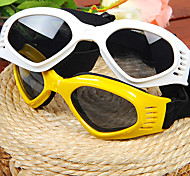 Pet's Fashion Sunglasses