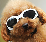 SEASONS Pet's Fashion Sunglasses