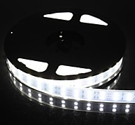 Dual Row 600x5050 SMD 144W  6000LM IP67 Waterproof  White Light LED Strip Light (5-Meter/DC 12V)