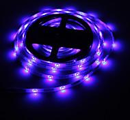 Impermeabile 5M 24W 300x3528 SMD RGB lampada LED Light Strip (DC 12V)