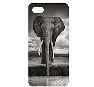 Cute Elephant  Lion Pattern PC Back Case for iPhone 5