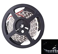 Dual Row 600x5050 SMD 144W 6000LM  White Light LED Strip Light (5-Meter/DC 12V)