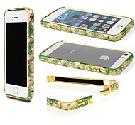 Transparent Glass Case for iPhone5