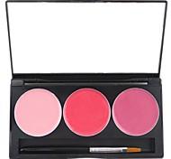 3 cores Nourshing hidratação profissional lábio geléia gloss maquiagem paleta cosmética com espelho&Jogo de escova 12 #