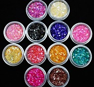 12Pcs Colors Acrylic Shell Power Nail Art Decoration