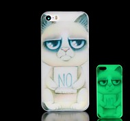 Cat Pattern Glow in the Dark Hard Case for iPhone 4/4S