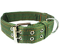 Dog Collars Green Nylon