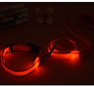 2.0cm Wide Double Stripe Nylon Led Leashes and Collar Set belt for Dogs and Pets (assorted colors,size)