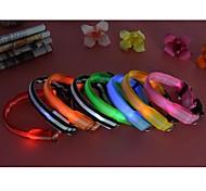 Katzen / Hunde Halsbänder Wasserdicht / LED-Lampen Rot / Weiss / Grün / Blau / Rosa / Gelb / Orange Nylon