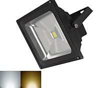 Projecteurs LED Blanc Chaud / Blanc Froid 20W 1 COB 1800 LM DC 12 V