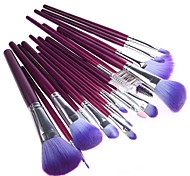 Women's 16 Pcs  Professional Makeup Cosmetic Brush