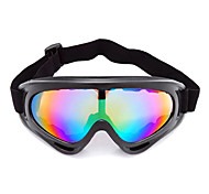 Anti-Wind Acrylic Fashion Ski Goggles