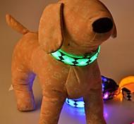 Cães Colarinho Refletor / Luzes LED / Retratável Vermelho / Branco / Verde / Azul / Rosa / Amarelo / Púrpura / Laranja Náilon