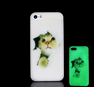 Cat Pattern Glow in the Dark Hard Case for iPhone 5 / iPhone 5 S