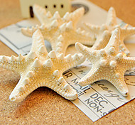 European Starfish Shape White Cowry Barrettes For Women(Ramdon Size)(1 Pc)