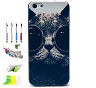 Bespectacled Cat Pattern PC Material Shell and Touch Pen Dust Plug Bracket Assembly for iPhone 5C