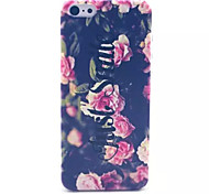 Chinese Rose Pattern Transparent Frosted PC Back Cover  For iPhone 5C