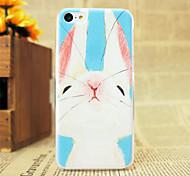 White Rabbit Pattern Hard Case for iPhone 5C