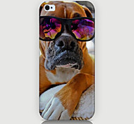 Fashion Dog Pattern Phone Case Back Cover Case for iPhone5C