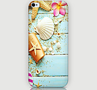 Shell Pattern Phone Back Case Cover for iPhone5C