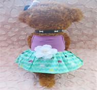 Cães Vestidos Púrpura Verão Corações
