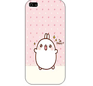 Little Rabbit Pattern Phone Back Case Cover for iPhone5C