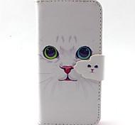 небольшой белый узор кошка PU кожаный чехол для всего тела с слот для карт и стоять на iPhone 5с