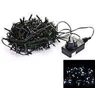 24V 30M 200-LED 8-Mode Wedding Christmas Party Decoration String Light - Deep Green (EU Plug