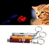 FUN OF PETS® Funny  Laser Playing Stick for Pet Dogs Cats(Assorted Colours)