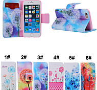 Dandelion Pattern PU Leather Full Body Case Phone Protection Shell with Card Bag and Card Slot for iPhone 6/6S