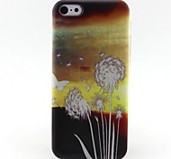Dandelion Pattern TPU Material Phone Case for iPhone 5C