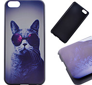 Cat Pattern PC Material Phone Case for iPhone 5C