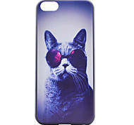 Glasses Cat Painting Pattern PC Case for iPhone 5C