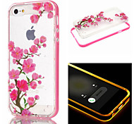 Plum Pattern Transparent TPU And PC Cover Case for Iphone 6 plus
