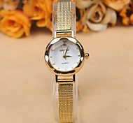 Simple and stylish dial alloy belt ladies watches