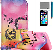 LEXY® Dandelion Fairy Pattern PU Full Body Leather Case with Screen Protector and Stylus for iPhone 5C