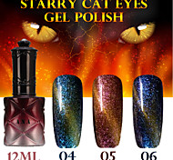 1PCS ANA Starry Cat Eyes Color Gel 12ml 12Colors Long Lasting Nail Polish 4-6